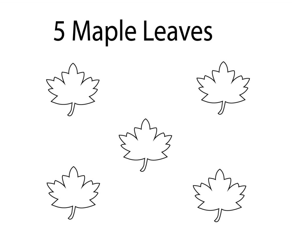 Best Maple Leaf Coloring Pages
