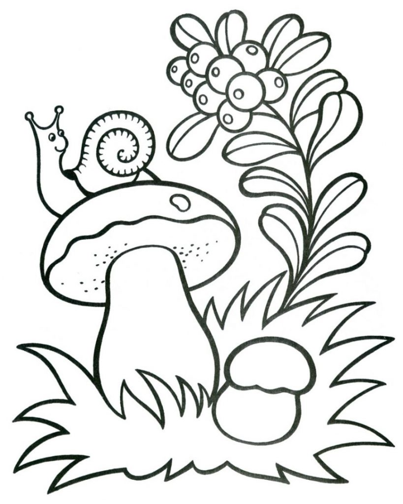 Free Mushroom Coloring Pages