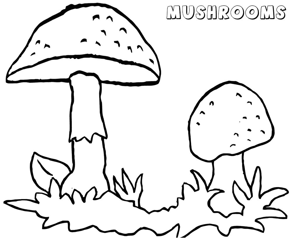 Mushroom Coloring Pages Free Printable