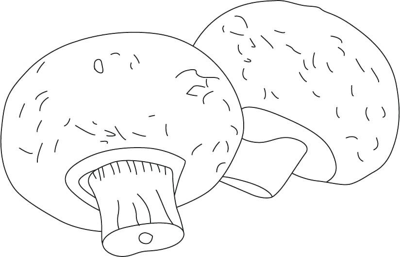 Mushroom Coloring Pages To Print
