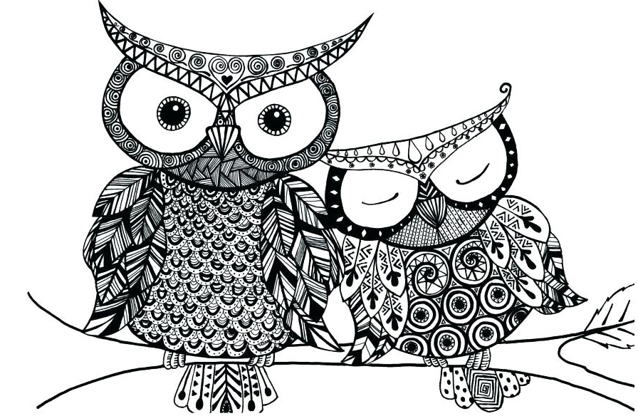 Free Printable Animal Coloring Pages for Adults,Owl ...